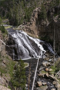 Yellowstone National Park - Gibbon Falls